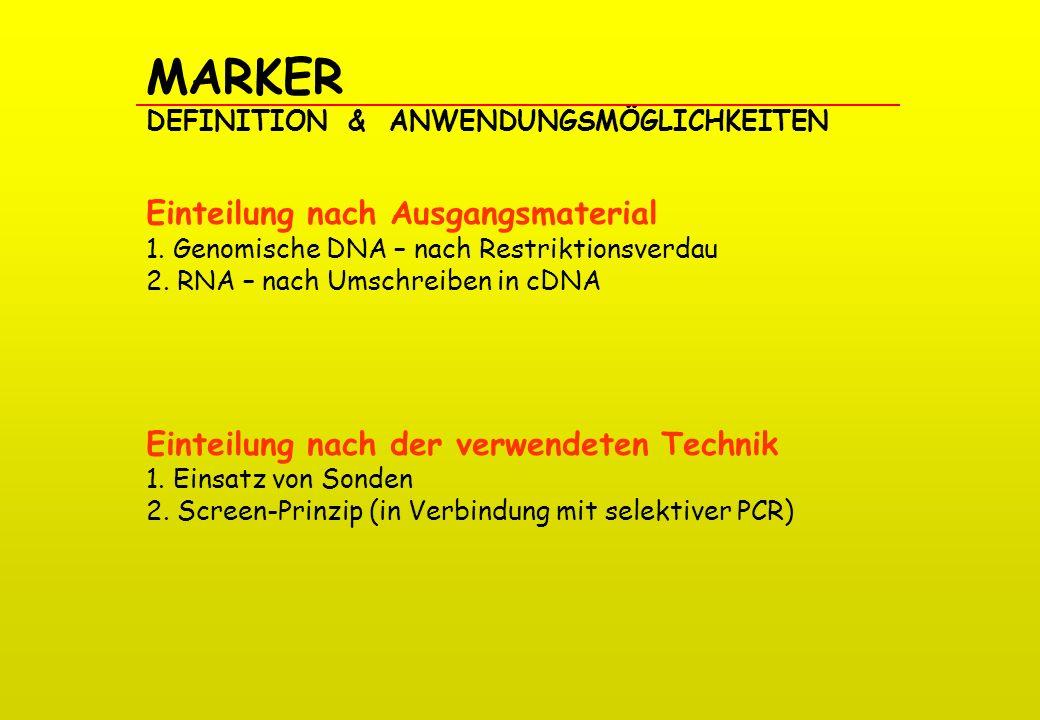 MARKER DEFINITION & ANWENDUNGSMÖGLICHKEITEN