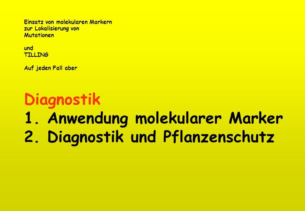 1. Anwendung molekularer Marker 2. Diagnostik und Pflanzenschutz