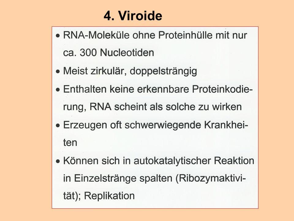 4. Viroide
