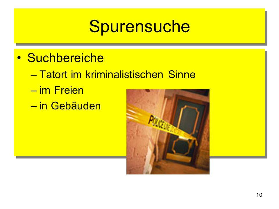 Spurensuche Suchbereiche Tatort im kriminalistischen Sinne im Freien