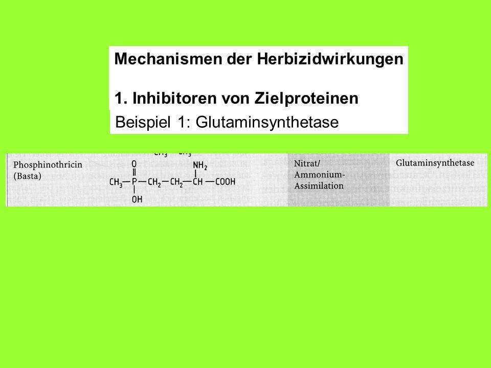 Mechanismen der Herbizidwirkungen