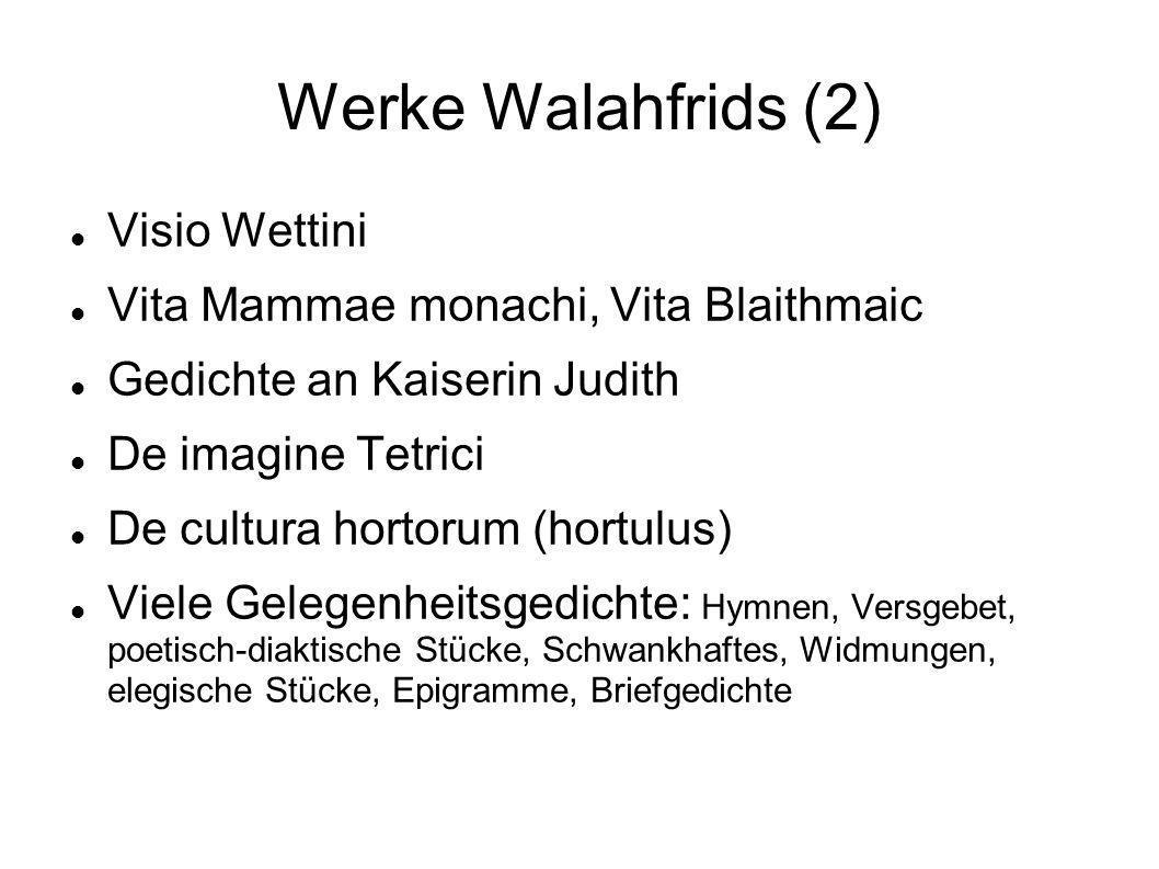 Werke Walahfrids (2) Visio Wettini