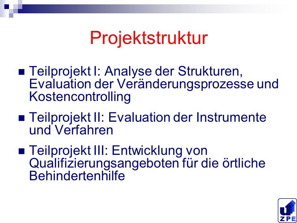 Projektstruktur Teilprojekt I: Analyse der Strukturen, Evaluation der Veränderungsprozesse und Kostencontrolling.