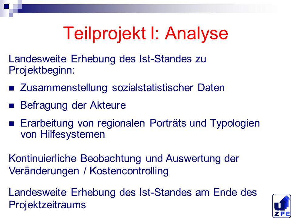 Teilprojekt I: Analyse