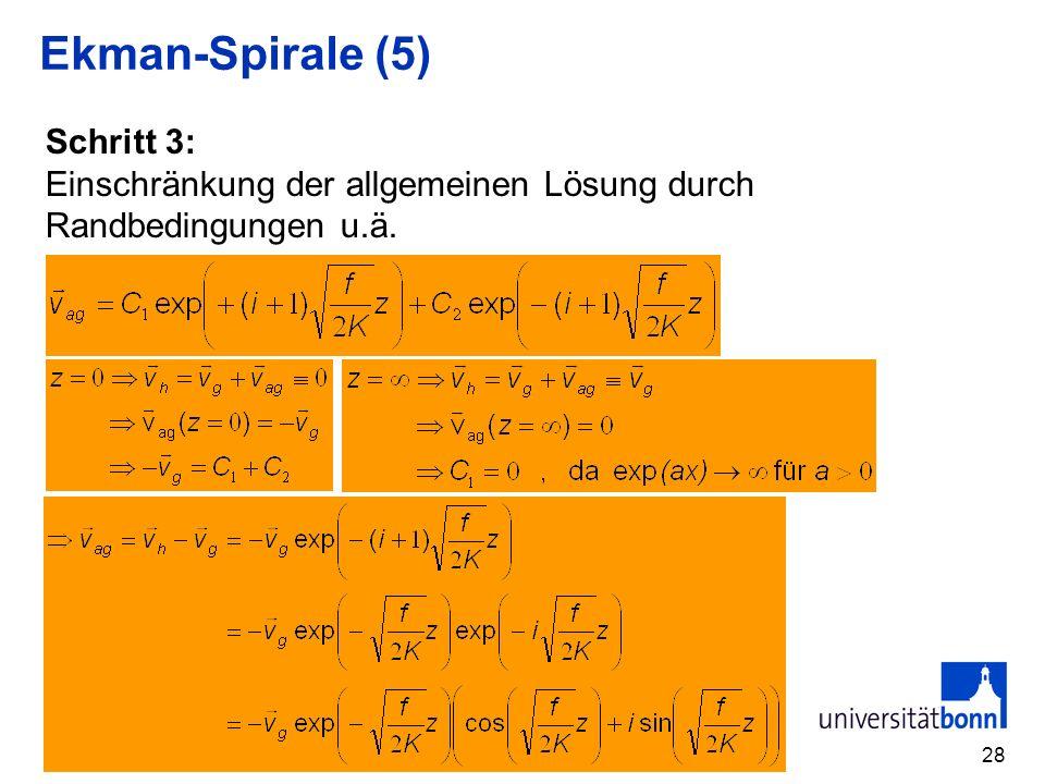 Ekman-Spirale (5) Schritt 3: