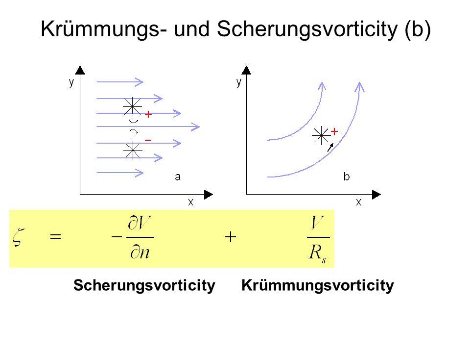 Krümmungs- und Scherungsvorticity (b)