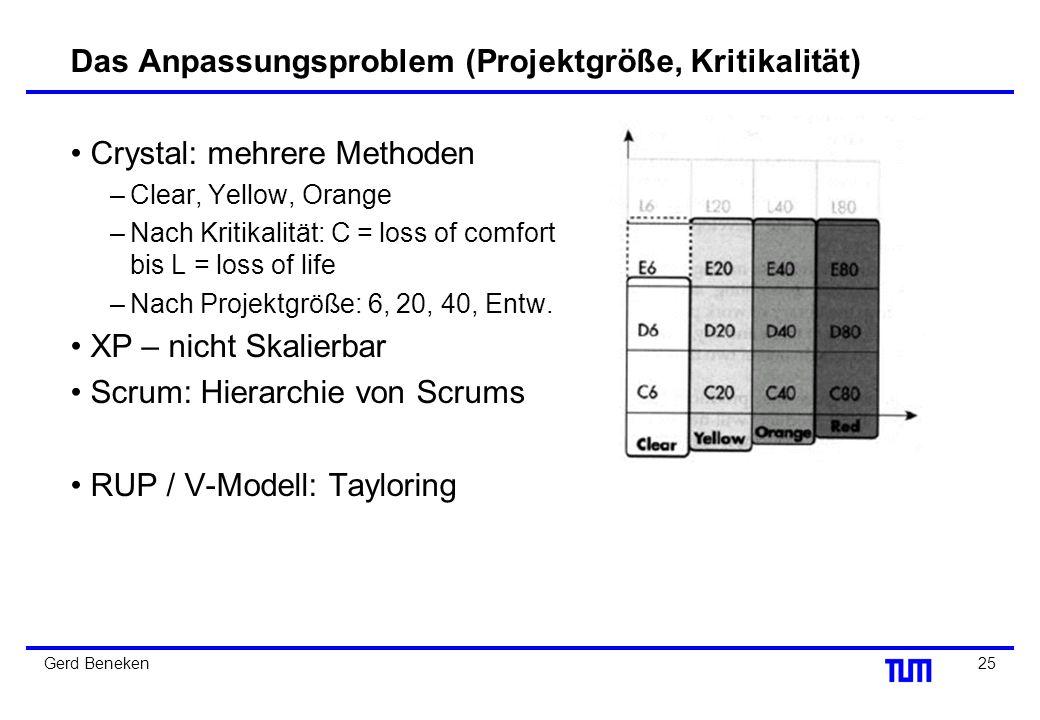 Das Anpassungsproblem (Projektgröße, Kritikalität)