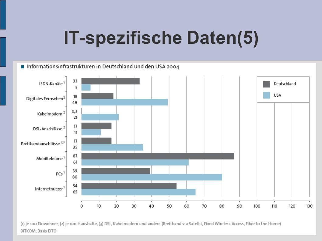 IT-spezifische Daten(5)