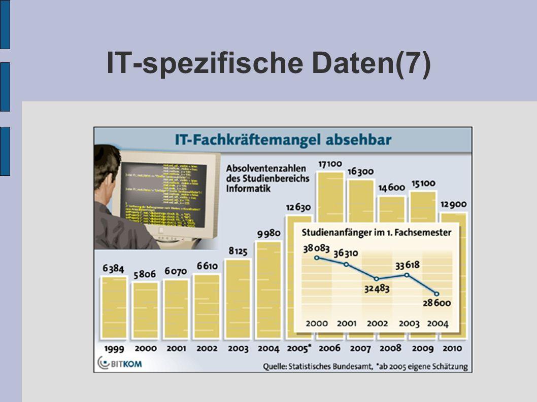 IT-spezifische Daten(7)