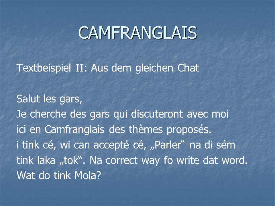 CAMFRANGLAIS Textbeispiel II: Aus dem gleichen Chat Salut les gars,