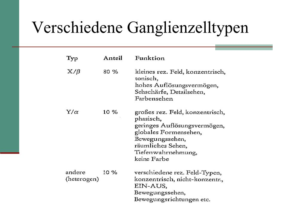 Verschiedene Ganglienzelltypen