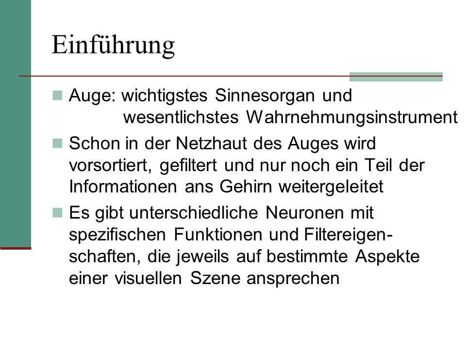 EinführungAuge: wichtigstes Sinnesorgan und wesentlichstes Wahrnehmungsinstrument.