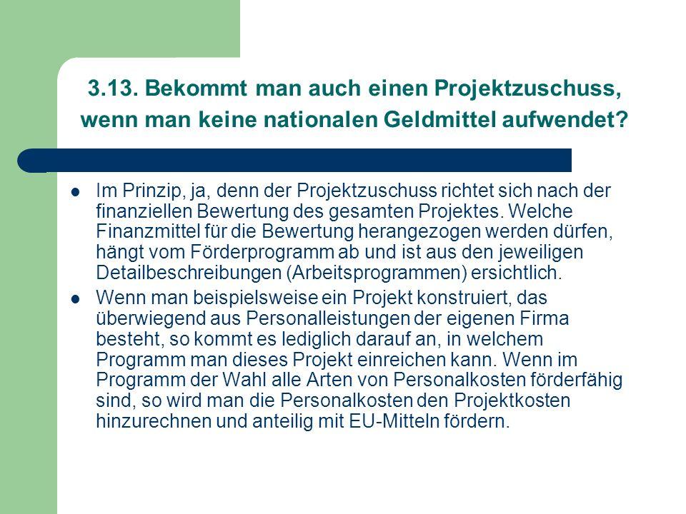 3.13. Bekommt man auch einen Projektzuschuss, wenn man keine nationalen Geldmittel aufwendet