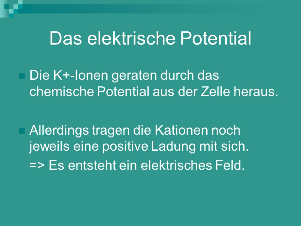 Das elektrische Potential
