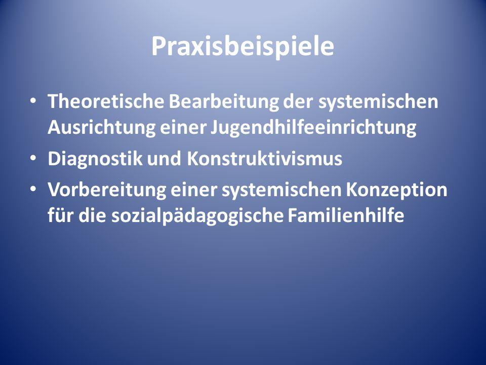 PraxisbeispieleTheoretische Bearbeitung der systemischen Ausrichtung einer Jugendhilfeeinrichtung. Diagnostik und Konstruktivismus.