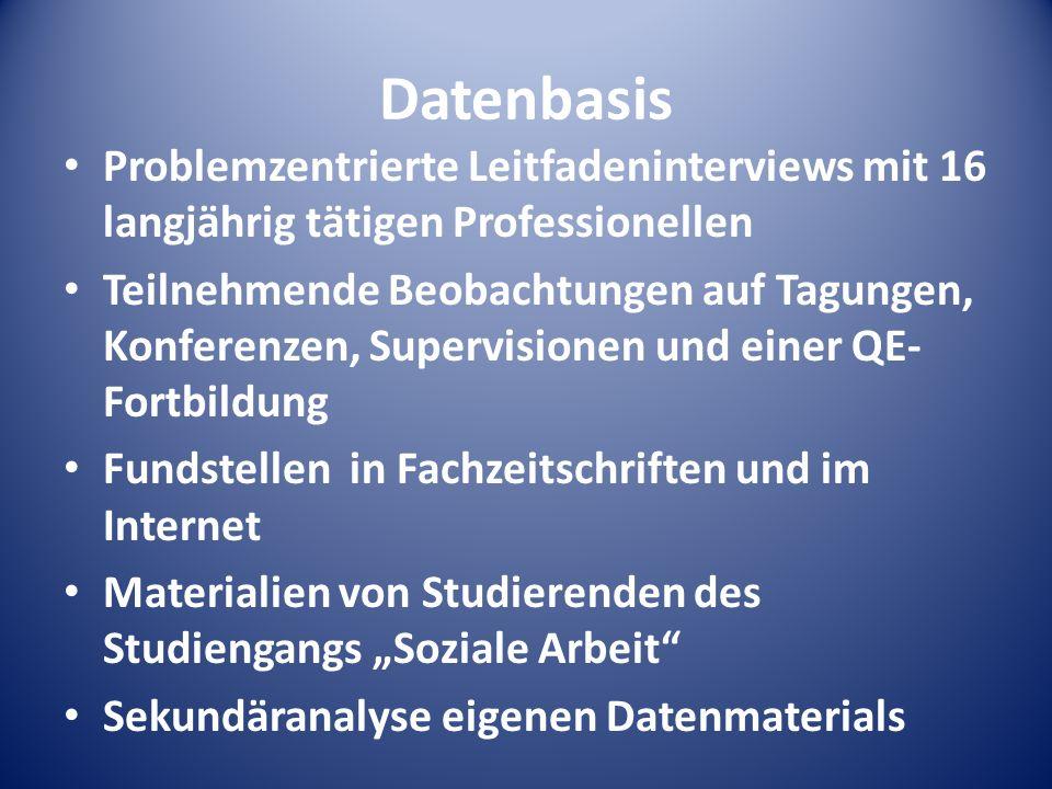 DatenbasisProblemzentrierte Leitfadeninterviews mit 16 langjährig tätigen Professionellen.