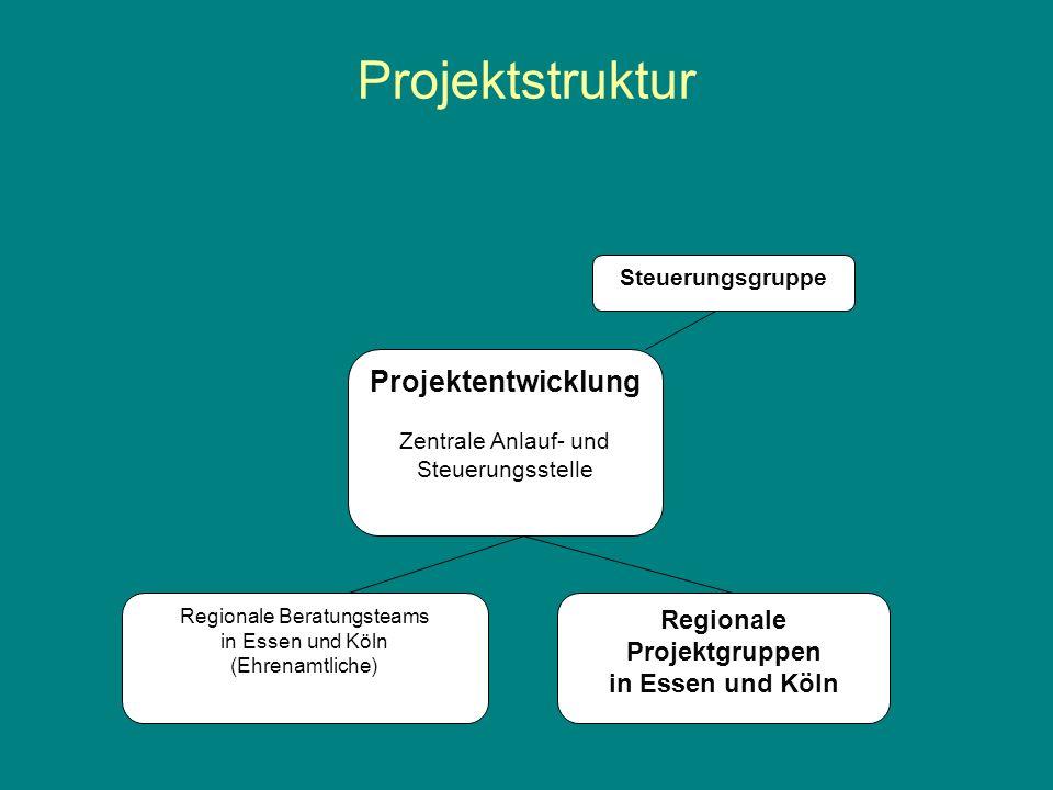 Projektstruktur Projektentwicklung Regionale Projektgruppen