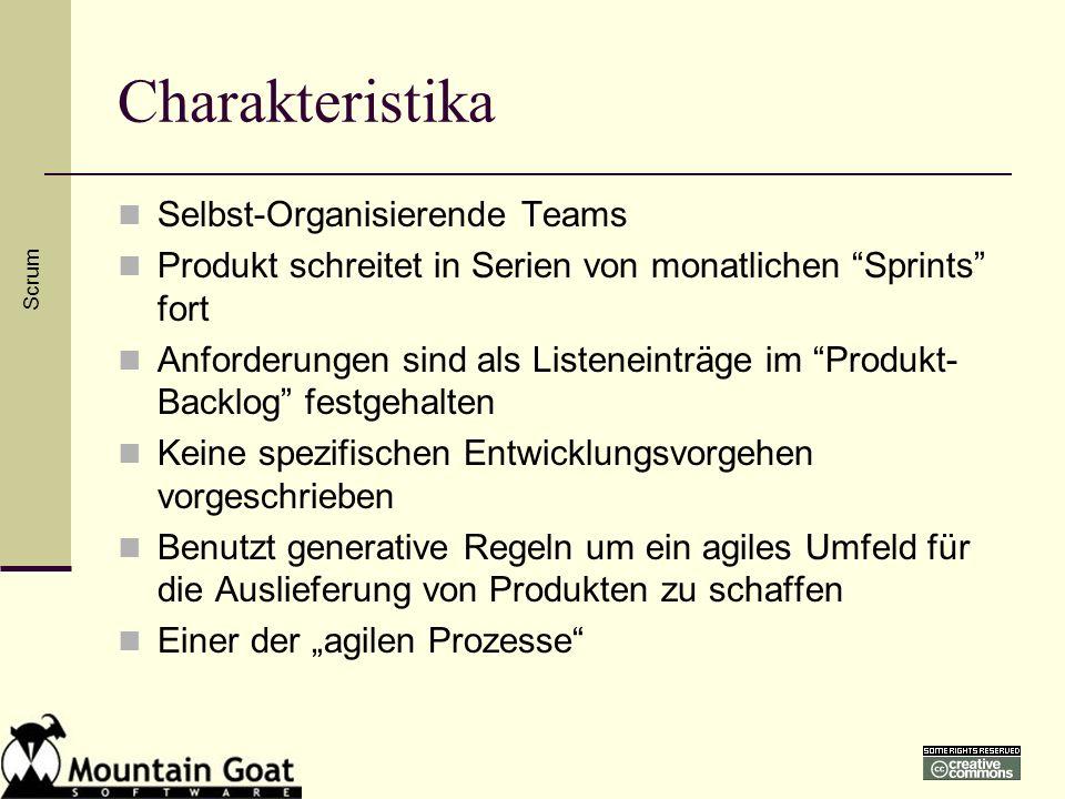 Charakteristika Selbst-Organisierende Teams