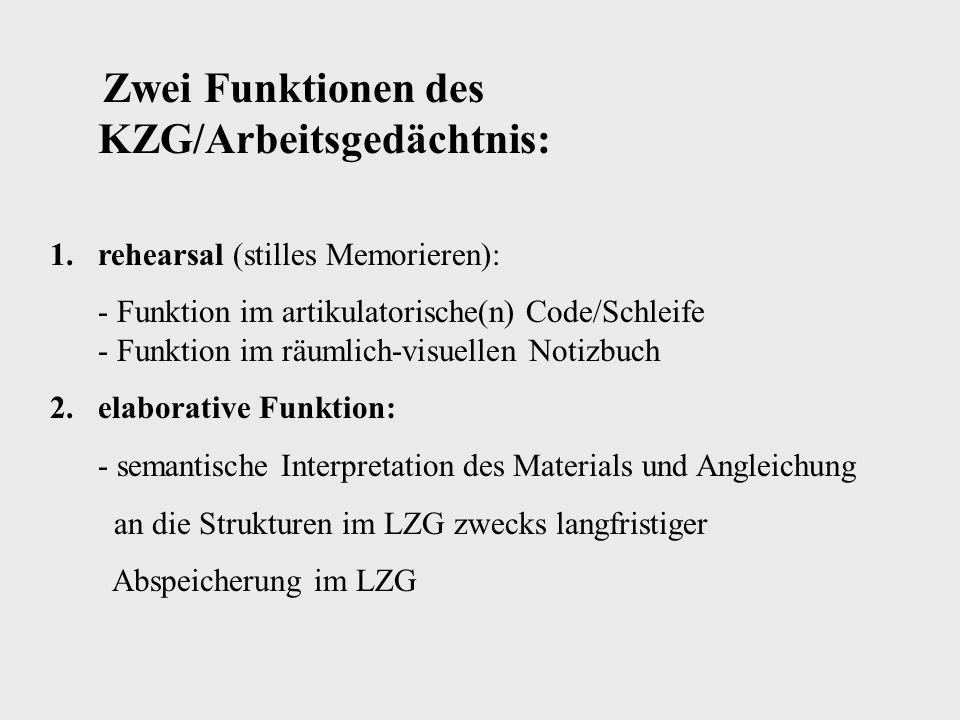 Zwei Funktionen des KZG/Arbeitsgedächtnis:
