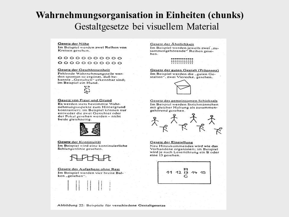 Wahrnehmungsorganisation in Einheiten (chunks) Gestaltgesetze bei visuellem Material