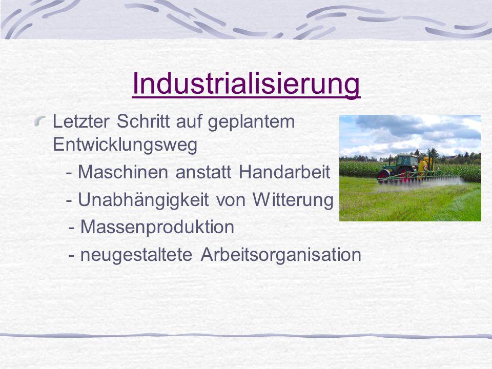 Industrialisierung Letzter Schritt auf geplantem Entwicklungsweg