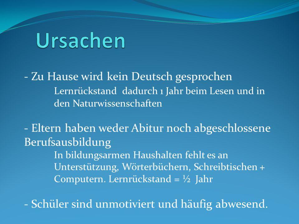 Ursachen Zu Hause wird kein Deutsch gesprochen Lernrückstand dadurch 1 Jahr beim Lesen und in den Naturwissenschaften.