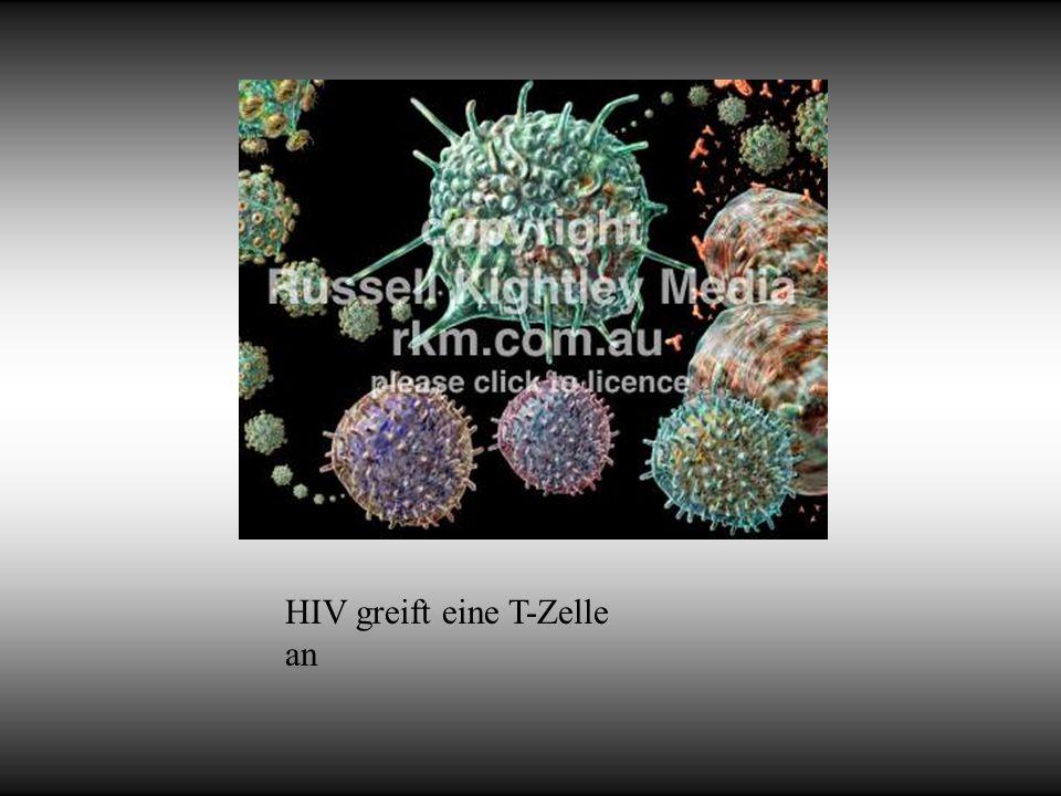 HIV greift eine T-Zelle an
