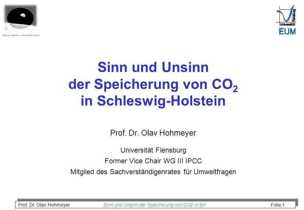 Sinn und Unsinn der Speicherung von CO2 in Schleswig-Holstein