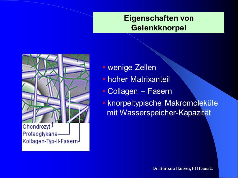 Eigenschaften von Gelenkknorpel