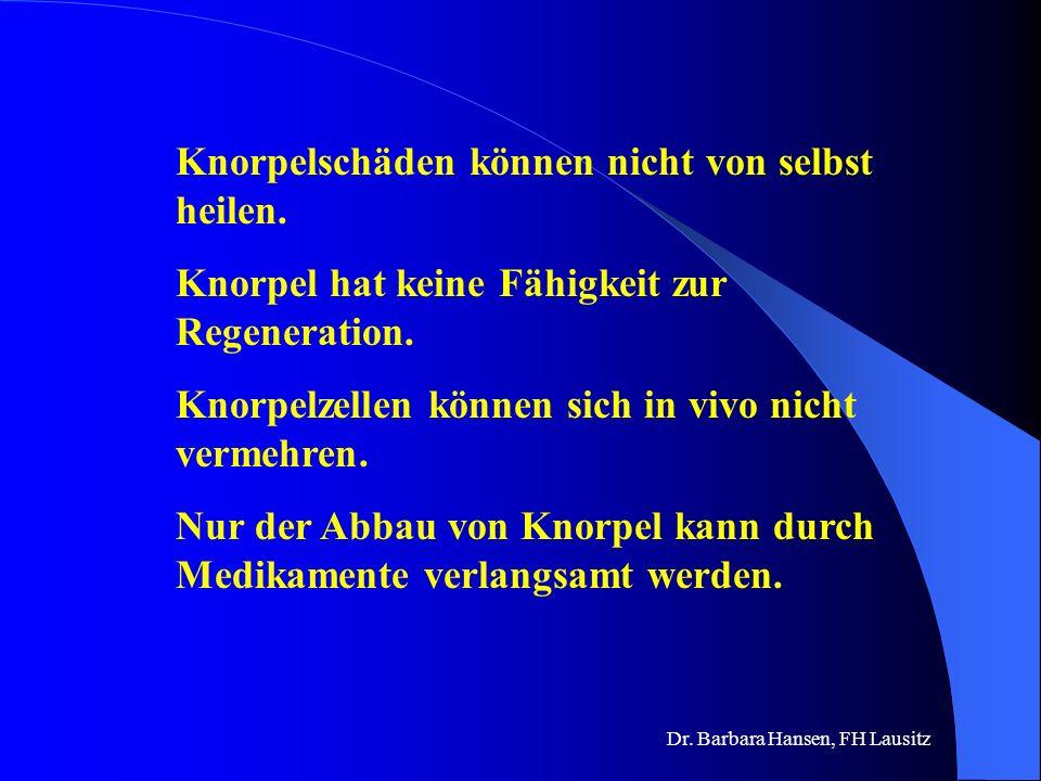 Dr. Barbara Hansen, FH Lausitz