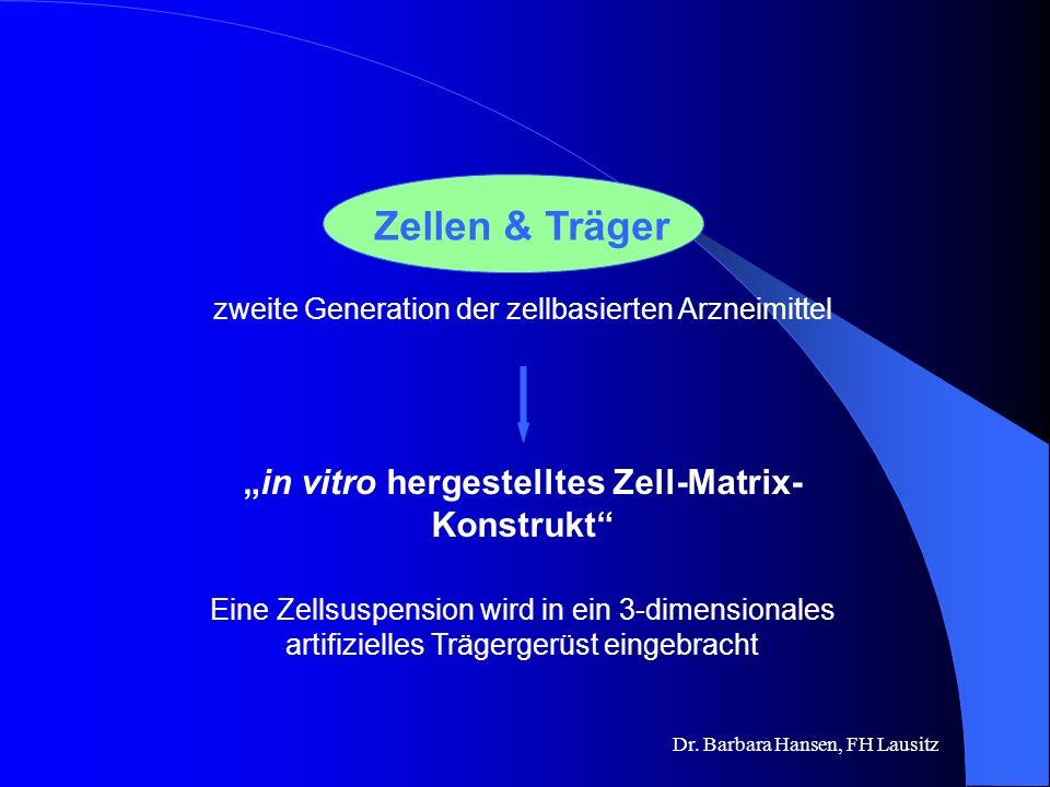 """in vitro hergestelltes Zell-Matrix-Konstrukt"
