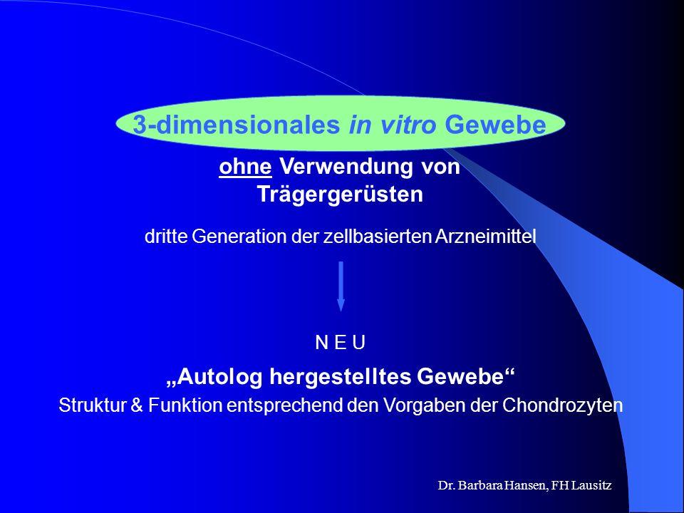 3-dimensionales in vitro Gewebe