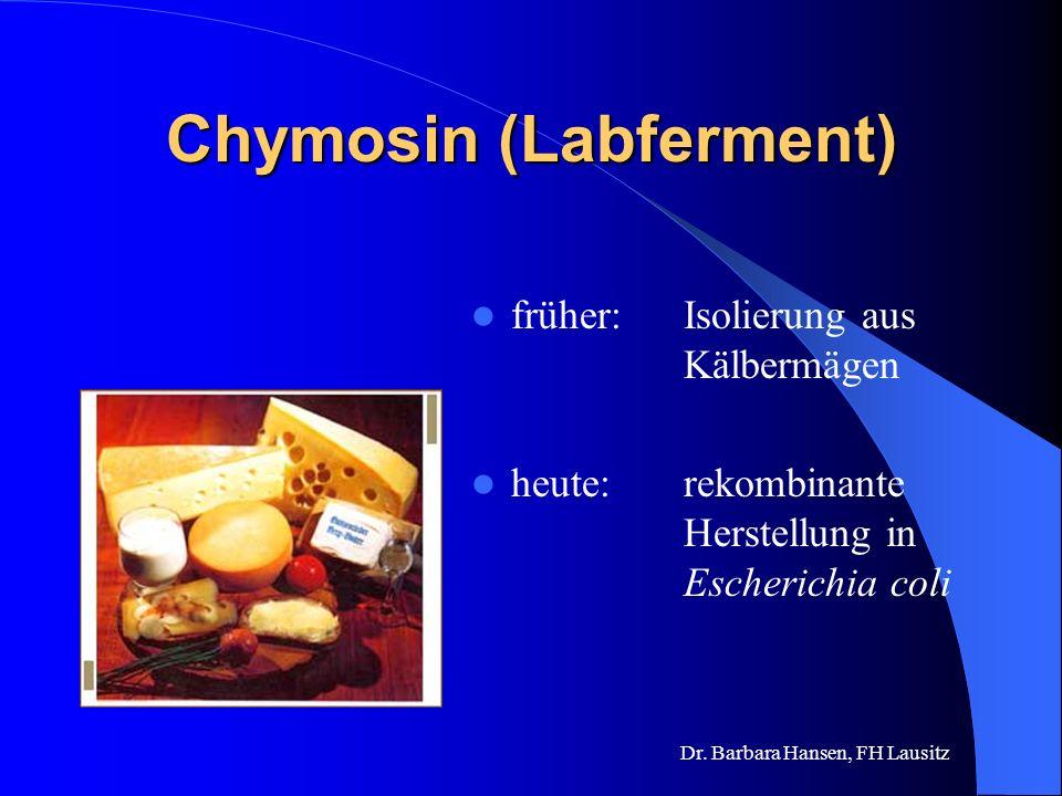 Chymosin (Labferment)