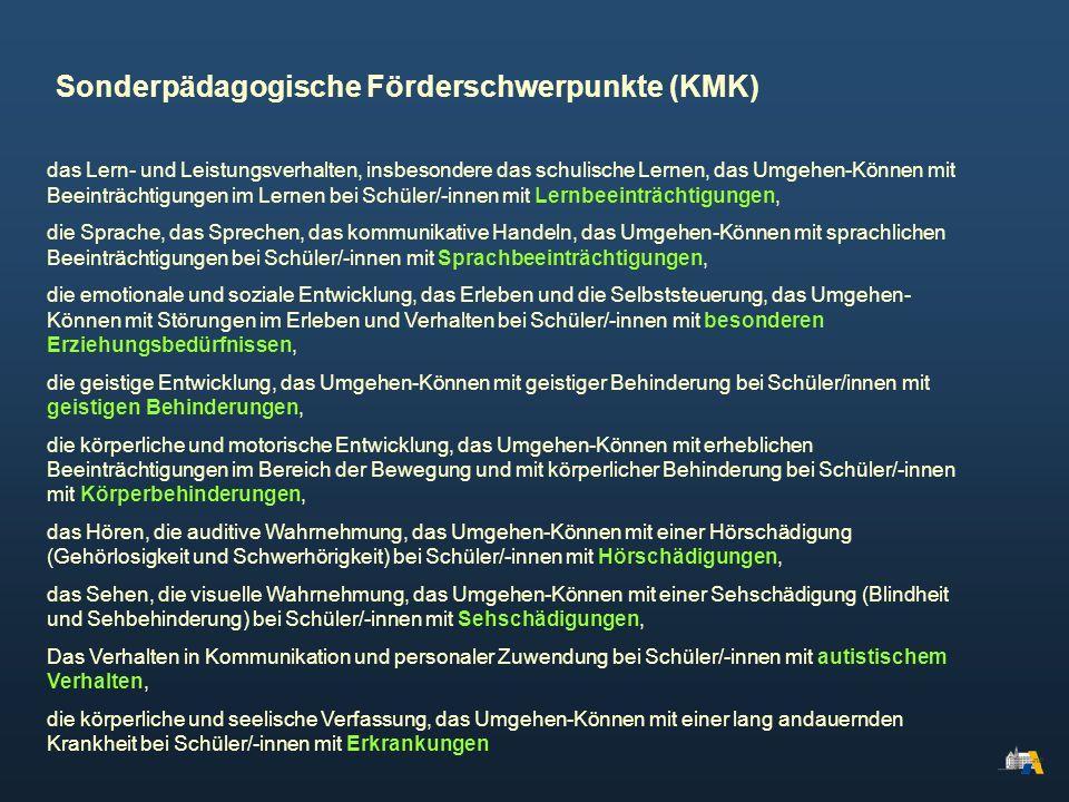 Sonderpädagogische Förderschwerpunkte (KMK)