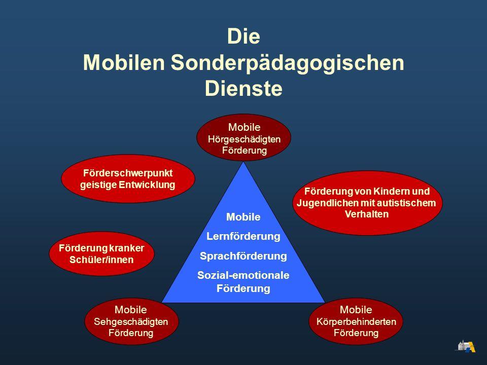Die Mobilen Sonderpädagogischen Dienste