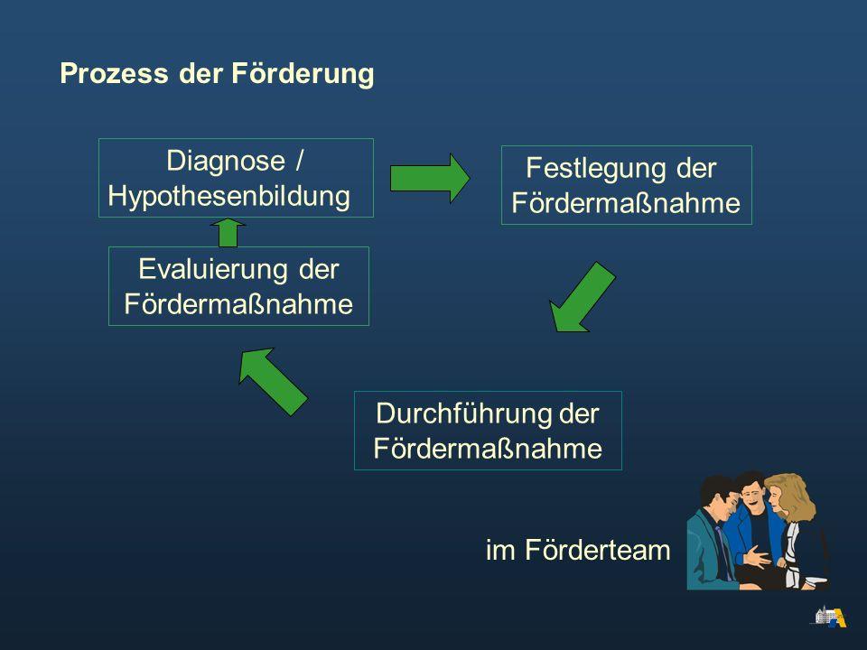 Prozess der Förderung Diagnose / Festlegung der Hypothesenbildung