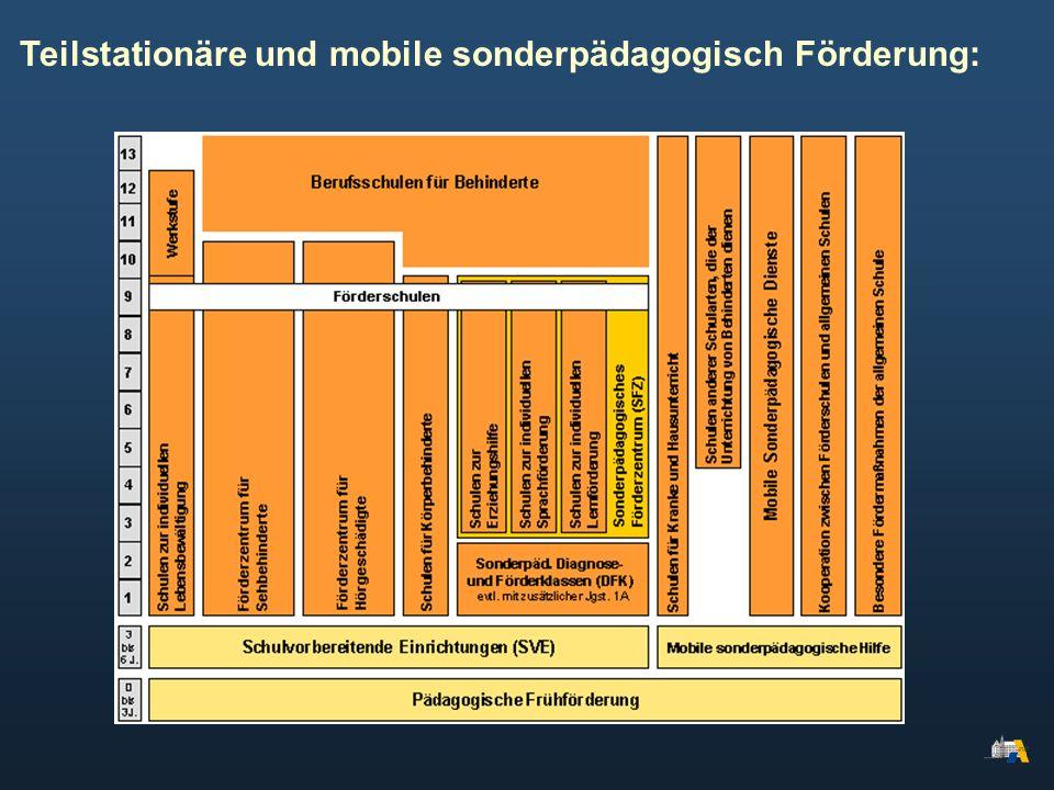 Teilstationäre und mobile sonderpädagogisch Förderung: