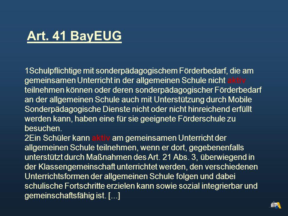 Art. 41 BayEUG