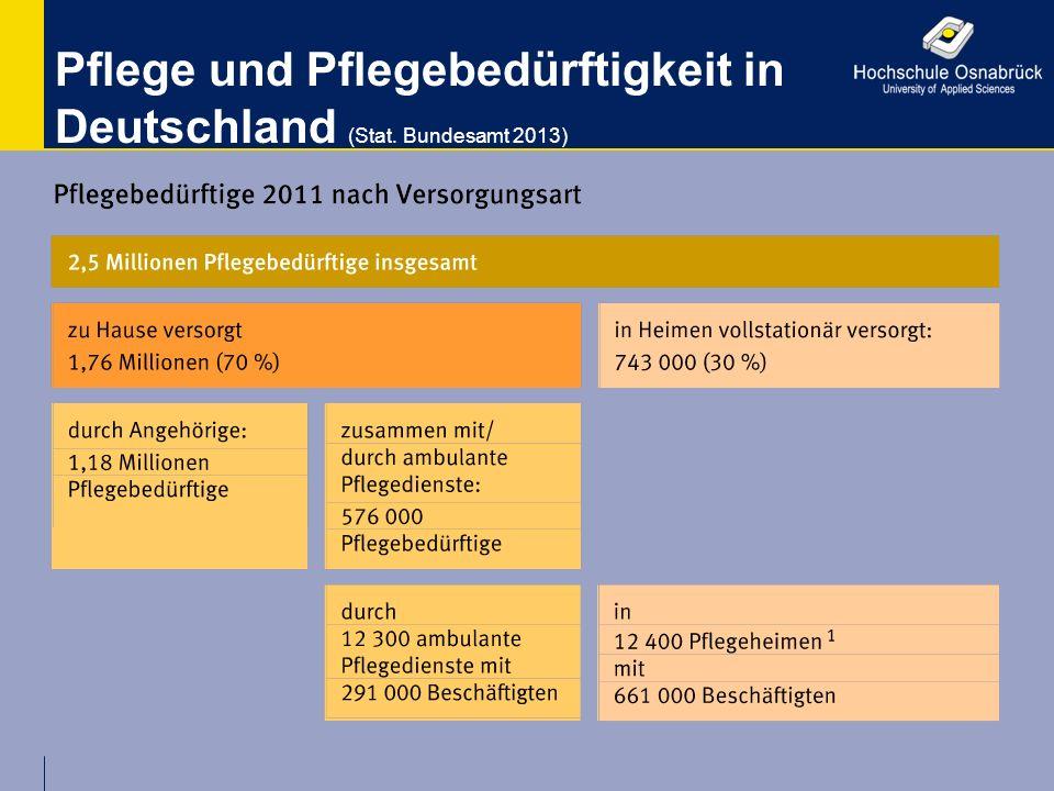 Pflege und Pflegebedürftigkeit in Deutschland (Stat. Bundesamt 2013)