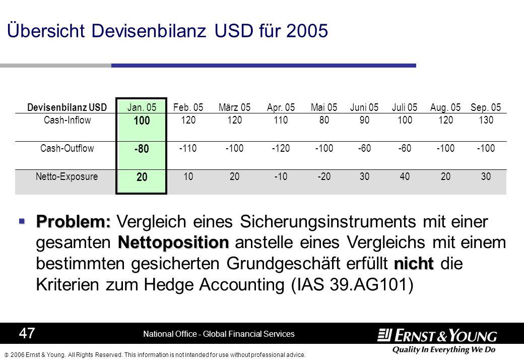 Übersicht Devisenbilanz USD für 2005