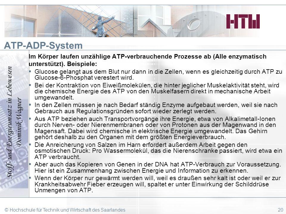 ATP-ADP-System Im Körper laufen unzählige ATP-verbrauchende Prozesse ab (Alle enzymatisch. unterstützt). Beispiele:
