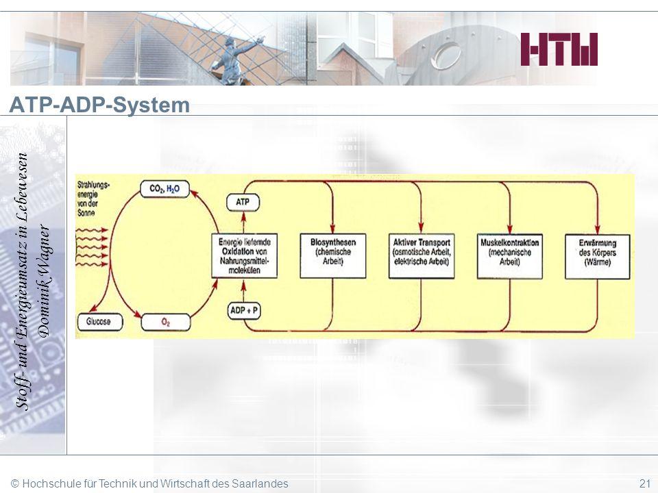 ATP-ADP-System © Hochschule für Technik und Wirtschaft des Saarlandes