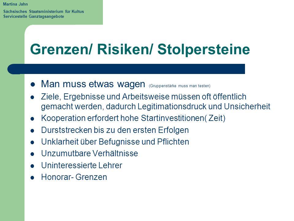 Grenzen/ Risiken/ Stolpersteine