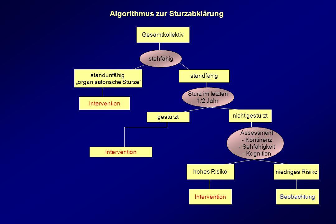 Algorithmus zur Sturzabklärung