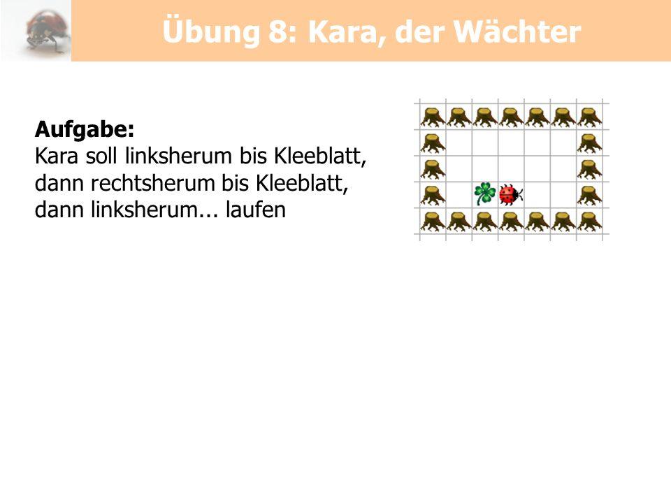 Übung 8: Kara, der Wächter