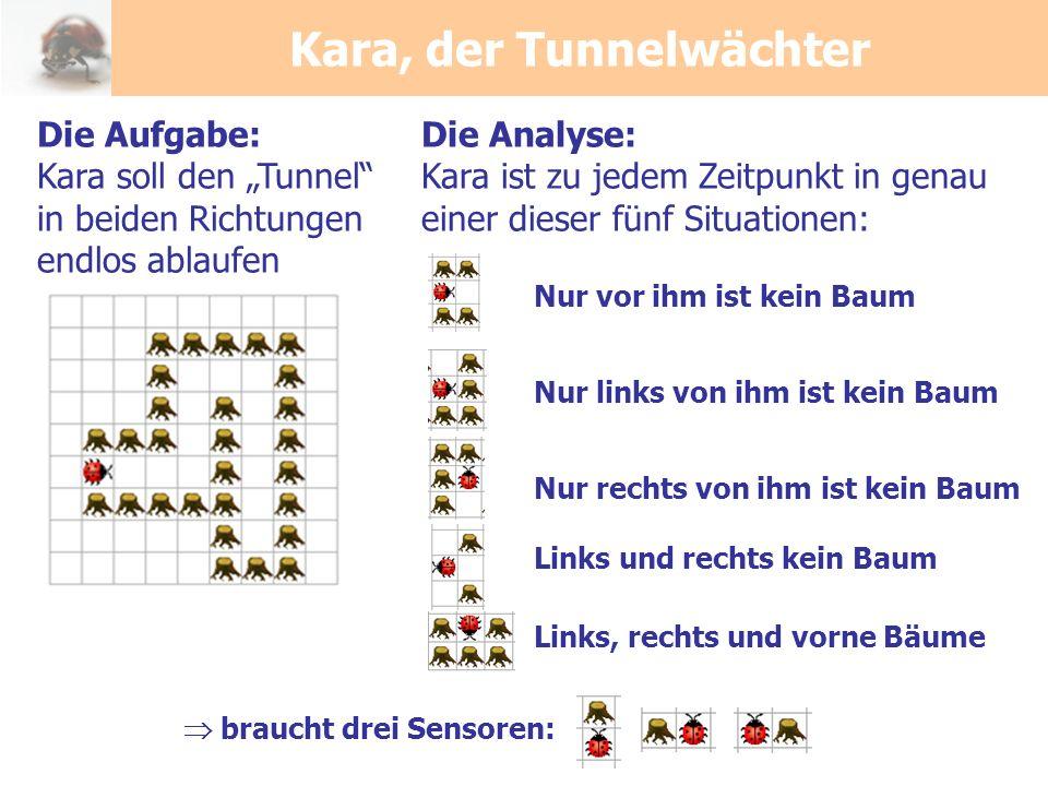 Kara, der Tunnelwächter