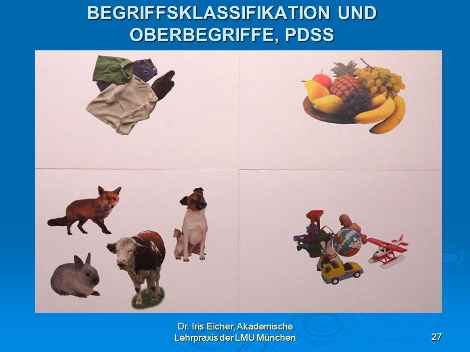 BEGRIFFSKLASSIFIKATION UND OBERBEGRIFFE, PDSS