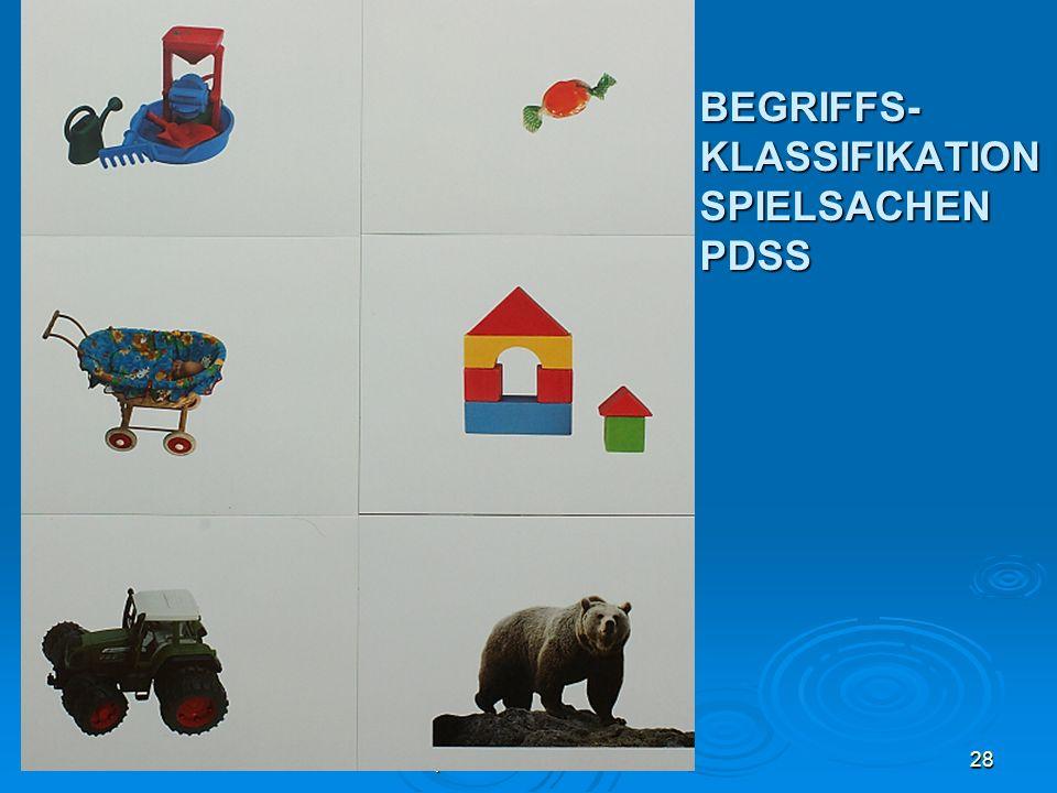BEGRIFFS-KLASSIFIKATIONSPIELSACHEN PDSS