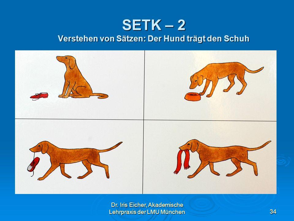 SETK – 2 Verstehen von Sätzen: Der Hund trägt den Schuh