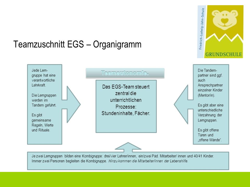 Teamzuschnitt EGS – Organigramm